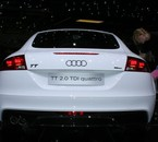 ..........AUDITTS....