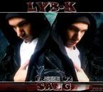 lyb-k