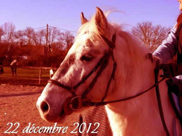 Samedi 22 decembre 2012