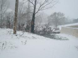 De beaux paysages sous la neige