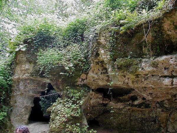 Les Premiers Hommes _ Grotte de Pair-non-Pair