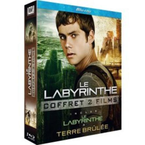 le deuxième DVD : le Labyrinthe : la Terre Brûlée !