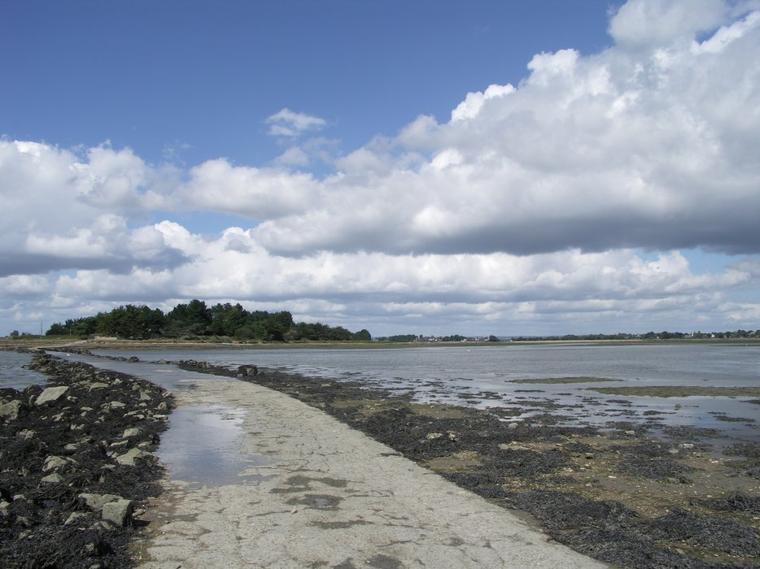 Couleurs du Golfe, Passage ile de Tascon, Marais salants de Lasné et ses Aigrettes