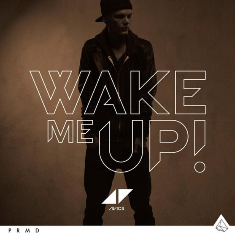 Avicii - Wake Me Up (2013)