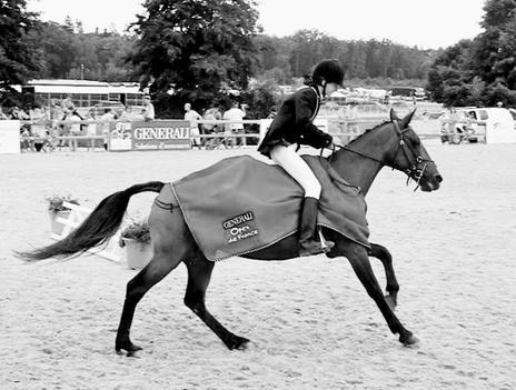 Championnats de France 2010 → Un Bonheur Fou.