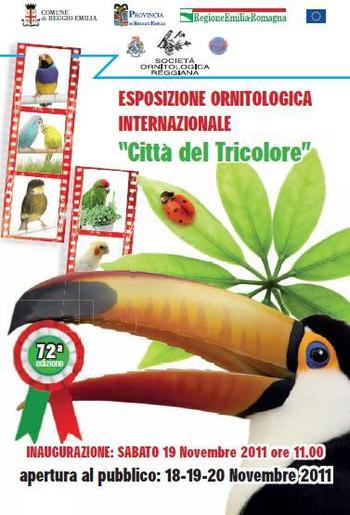 """ESPOSIZIONE INTERNAZIONALE """"REGGIO EMILIA 2011"""""""