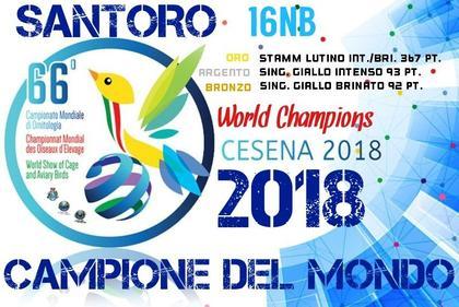 66° CAMPIONATO MONDIALE DI ORNITOLOGIA - CESENA 2018