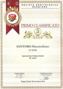 """79^ ESPOSIZIONE INTERNAZIONALE DEL """"TRICOLORE"""" (Reggio Emilia)"""