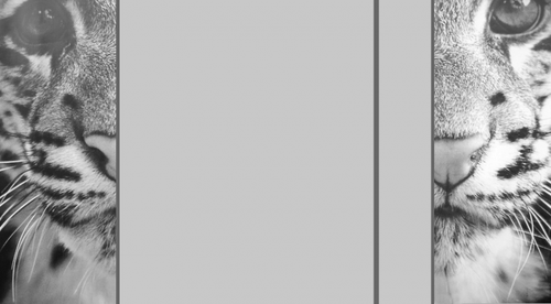 Habillage N.3 → 1 colonne étroite/droite ✖ ✖ ✖ ✖ ✖ .