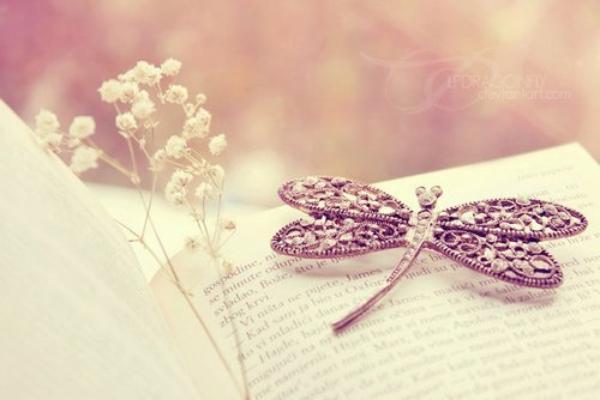 Un peu de moi ?  L'oeuvre littéraire sert de miroir au public.   L'auteur s'y reflète et le lecteur y trouve son image.  [Jiang Zilong]