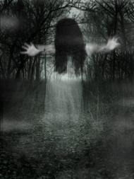Le paranormal c'est quoi ?