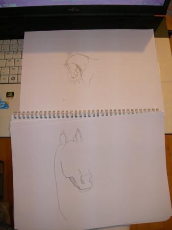 les dessins en cours de construction :)