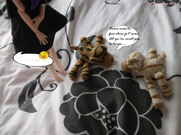Rencontre avec les tigres :3