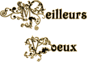 MEILLEURS V¼UX 2014