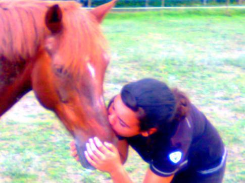 """"""" Le Paradis est l'air qui soufle entre les oreilles d'un cheval """" .. <3"""
