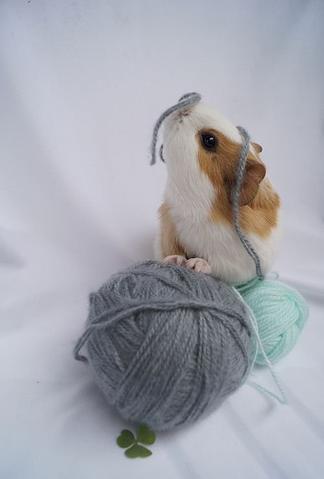 Astuce tricot ou crochet trouvée sur le net !