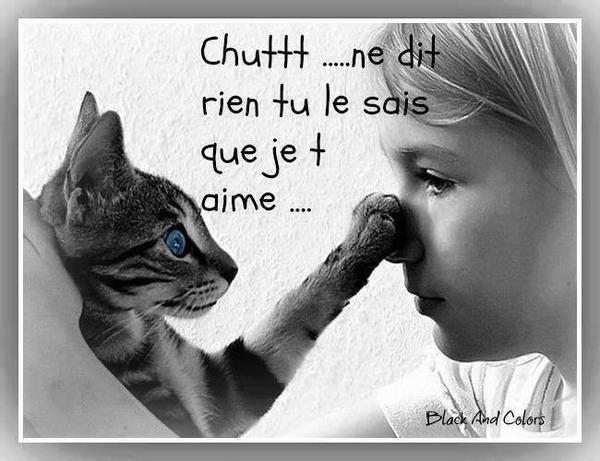 chutt