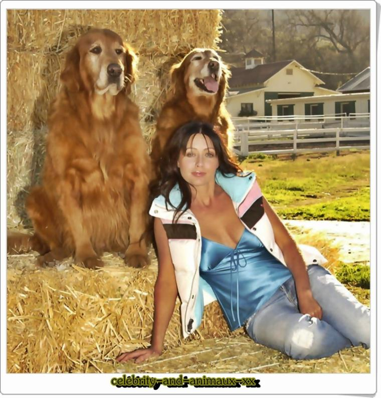 Shannen Doherty et ses golden retriver