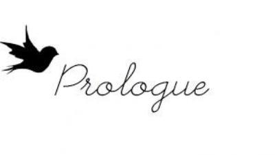 Prologue : Opposites Attract !