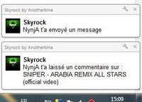Extension Skyrock pour Google Chrome