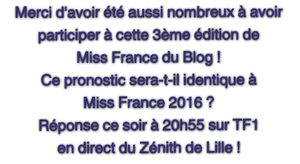 Récapitulatif Miss France du Blog