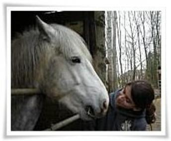 Le cheval n'aura jamais la perfection de l'homme. ♥