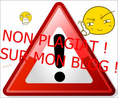 Le plagiat est intèrdit sur mon blog