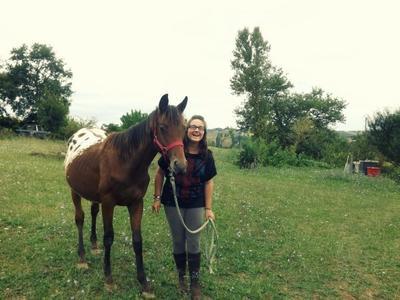 - Petit cheval au coeur tendre -