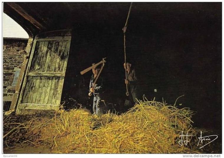 Aujourd'hui, dans la série des vieux métiers, la vie à la ferme.