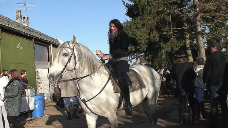 Hommage à Grajito, le bel étalon andalou blanc qui galope maintenant au paradis des chevaux