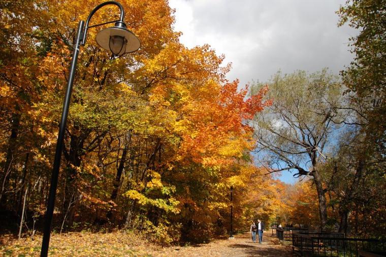 Aujourd'hui, voici quelques photos prises en automne au Quebec.