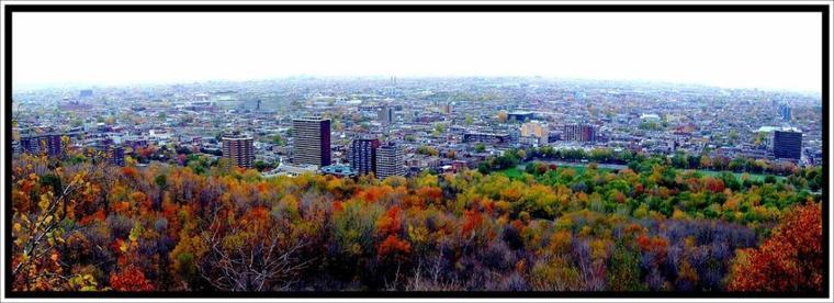 Bonjour à tous et à toutes, aujourd'hui, voici quelques photos prises en automne au Québec.