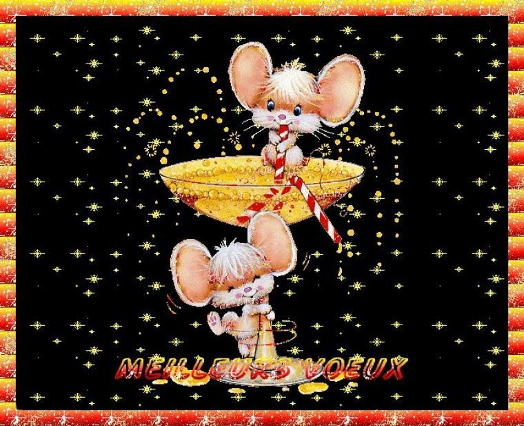 Bonjour à tous et à toutes, je vous souhaite une excellente journée ce mercredi