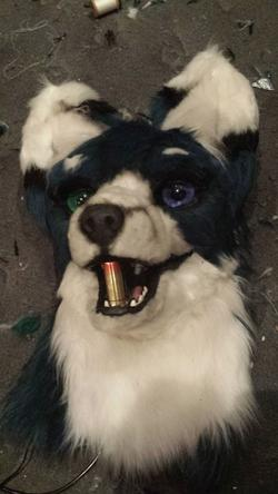 Ma fursuit 2.0