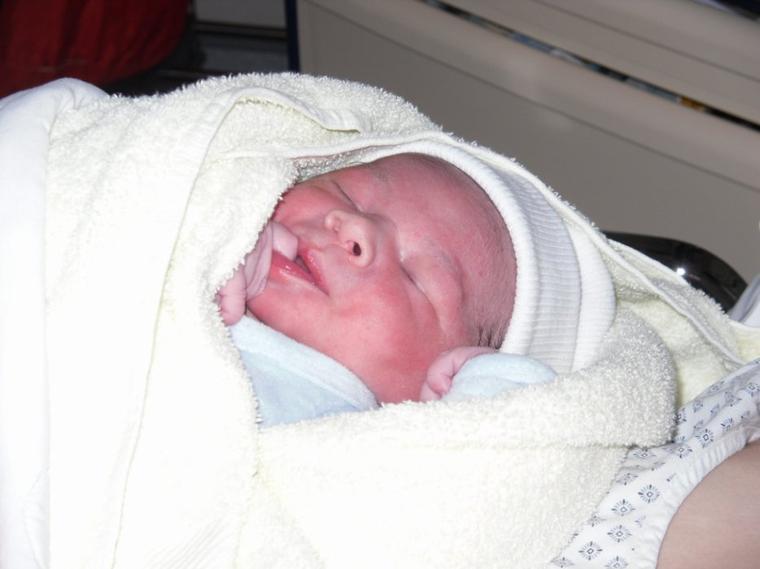 naissance du petit