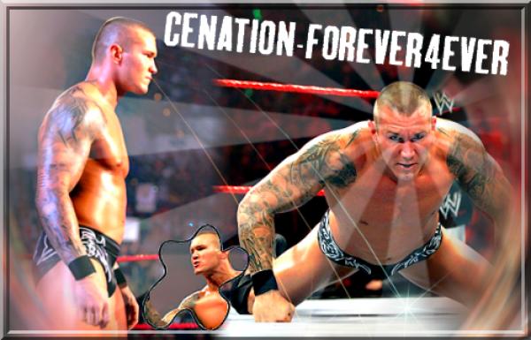 WWE Champions Et Championnes 2011