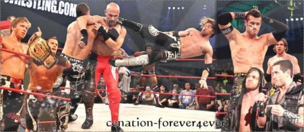 TNA Champions Et Championes 2011