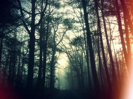 Je navigue entre le passé et l'avenir, entre la vie et la mort, entre l'amour et la haine...