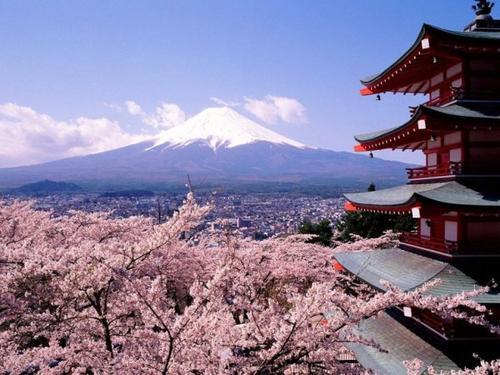 Voyage au Japon 2015 ♥