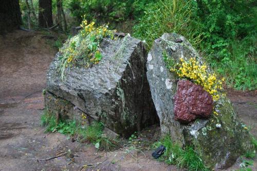 Séjours a Broceliande pour s'évadé ^^ et lieu des plus mythique de Merlin l'enchanteur un endroit que j'aimerai beaucoup visiter