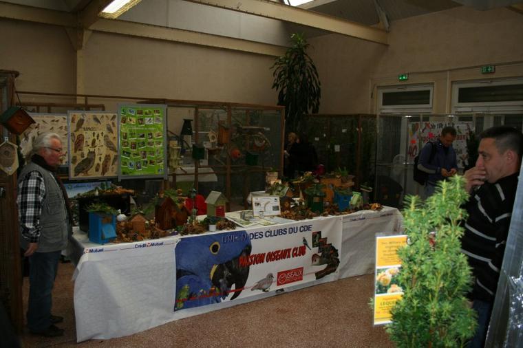 EXPO DE SAINT QUENTIN SUITE
