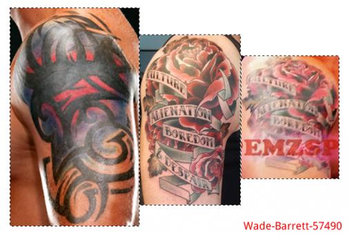Tout ce qui concerne Wade Barrett.