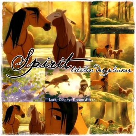 Fiche film : Spirit