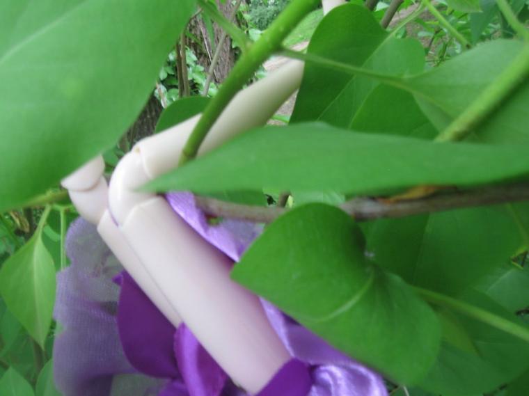 Yumi in Wonderland