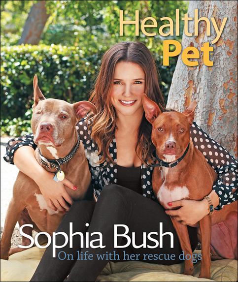 Sophia & les animaux