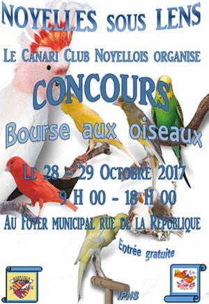 concours Noyelles sous Lens 2017 ( s 43 )