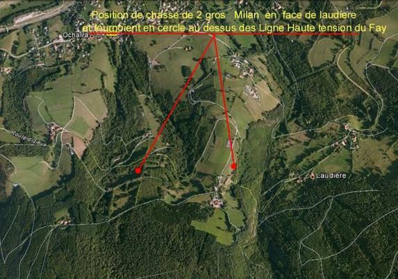 Positions et terrain de CHASSE de certains RAPACES du Massif PILAT