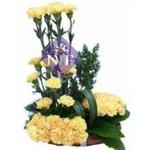 Flowers Delivery In Chandigarh - What Every User Must Look Into