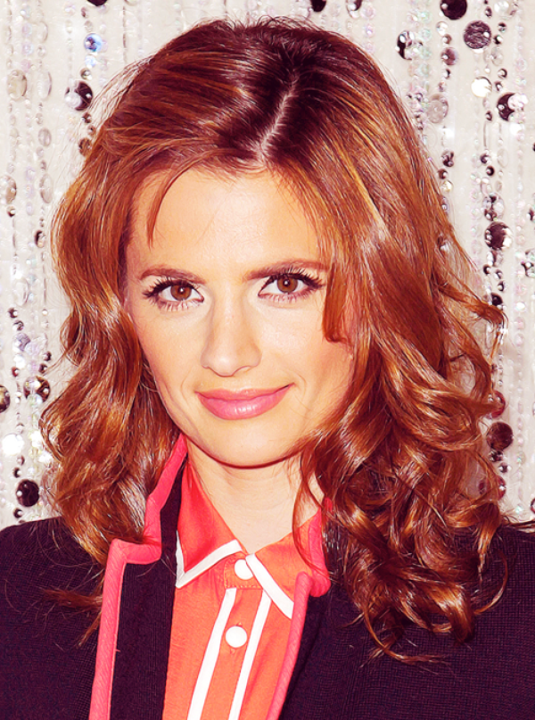 Stana Katic - Red Carpet Secrets