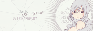 The Past [ - Fiche - ]